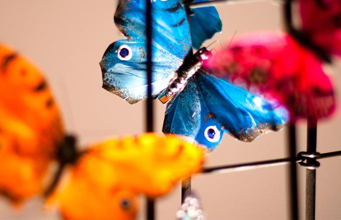 Lampa svítí za doprovodu třepotání křídel motýlů