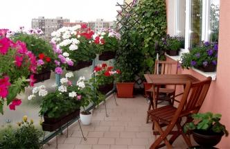 Krásu svého upraveného balkonu si můžete užívat i v chladnějším období. Díky sálavému topení.