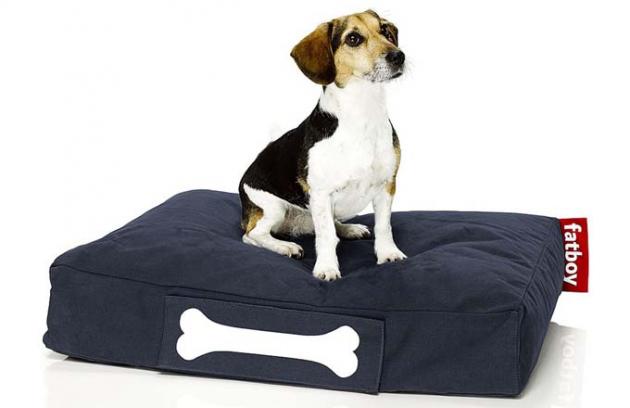 Doggielounge: design tentokrát patří psům
