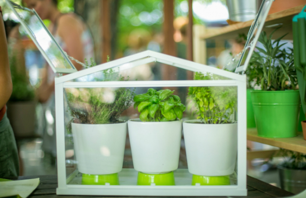 Pusťte se směle do zahradničení (foto: IKEA)