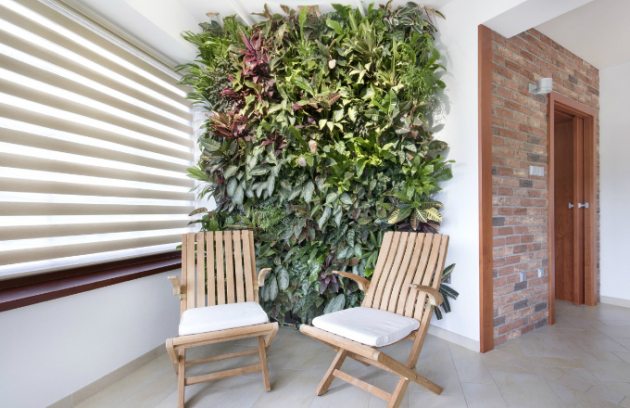 Zelená architektura? Budoucnost našich domácností i životního stylu!