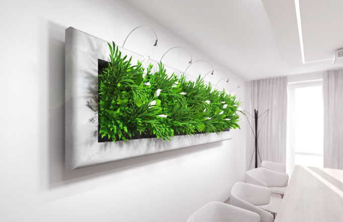 LivingArt obrazy – spojení umění a zeleně