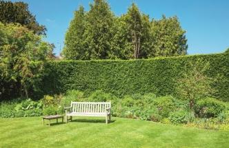 Jak založit dokonalý trávník?