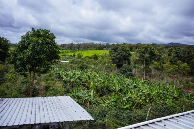 Nespresso představuje unikátní kávu z Galapág