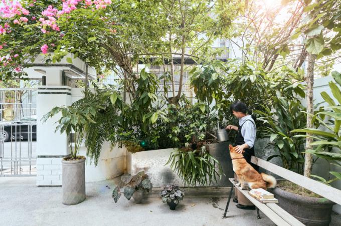 Studio In situ interior design zachovalo krásu původní stavby na Taiwanu a vytvořilo místo s neuvěřitelnou atmosférou.