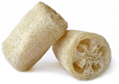 Lufa válcovitá, označovaná též jako egyptská, je tropická rostlina, která se v Asii a Africe konzumuje jako zelenina. Z dozrálých plodů se vyrábějí mycí houby, které se využívají v sauně na jemnou masáž těla nebo jako kosmetická pomůcka na peeling obličeje. Odpad, který při tvarování těchto pomůcek či dekorativních předmětů vzniká, se společně s recyklovaným plastem využívá v Paraguayi jako stavební materiál domů pro nemajetné. Kosmetické houbičky z lufy koupíte za 81 Kč, WWW. SAUNA. CZ