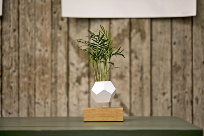 Levitující květináč Lyfe (Flyte) na podstavci z dubového dřeva, cena 5 841Kč, WWW. DESIGNOVYNABYTEK. CZ