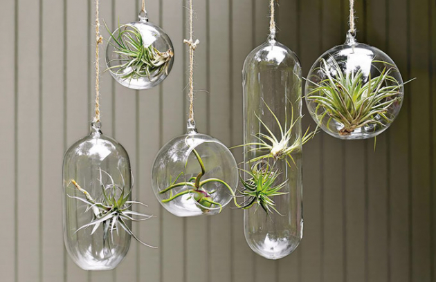 Také se rádi obklopujete květinami a rostlinami všeho druhu? Pak vězte, že si tuto vášeň nemusíte odpírat ani v tom nejmenším interiéru. Mohou se kolem vás vznášet, volně pohupovat zavěšené v prostoru, dokonce i s květináči obrácenými dnem nahoru, a na stěně si z nich můžete vytvořit svěží zahradu.