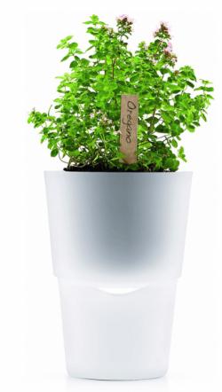 Samozavlažovací květináč Frosted (Eva Solo), design Tools Design, polyston, sklo anylon, výška 17,5cm, Ø 11cm, cena 917Kč, www.elarte.cz