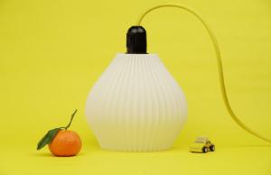 Nápad na 100 návrhů závěsných svítidel, které si může kdokoliv vytisknout na 3D tiskárně se objevil na platformě Kickstarter, která podporuje různé kreativní projekty.