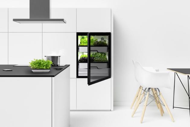 Plantcube přináší čerstvě sklizené saláty, bylinky a rostlinné klíčky přímo do kuchyně. V současné době je na výběr 25 druhů rostlin, zvláště bohatých na aroma a živiny – bez pesticidů a dalších vlivů na životní prostředí. (Foto: Agrilution)