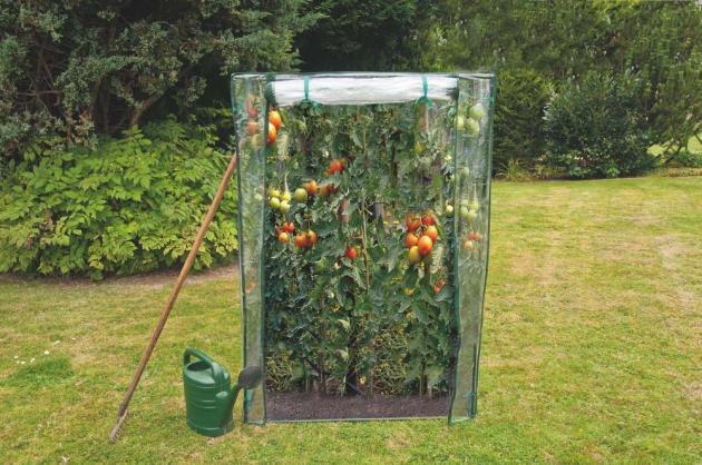 Foliovník na rajčata