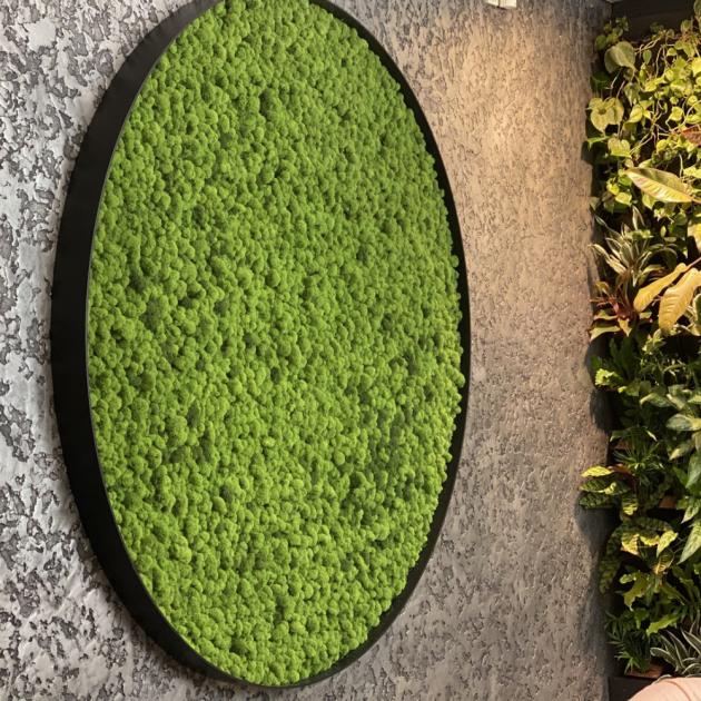 Pohled na svěží, sametově zelené mechové plochy navozuje blahodárný pocit pohody, relaxace a klidu.  (foto: Kateřina Němcová)