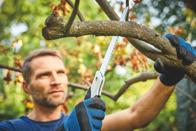 Nůžky na větve for_q s převodem kovadlinkové vč. skládací pilky