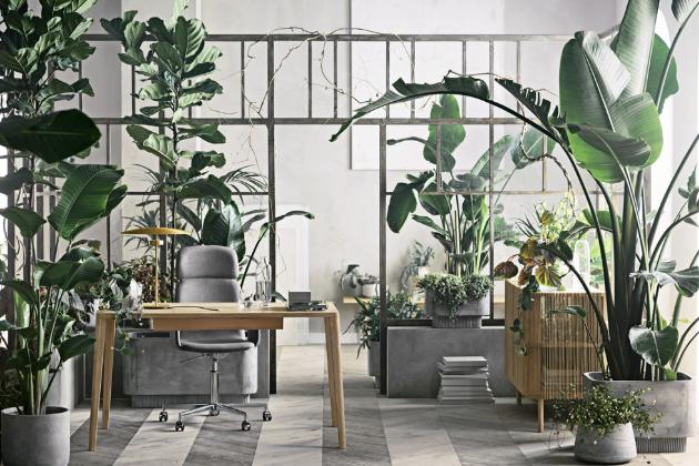 Stůl Graceful (Bolia), design Michael H. Nielsen, masivní dub s certifikátem FSC, cena od 39 330 Kč, židle Palm, design Says Who, cena polstrované varianty od 18 112 Kč, WWW.DESIGNVILLE.CZ